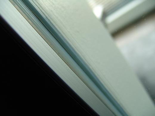 Auf der Duschseite wurden die Wandfliesen bis über das Profil gezogen und mit einer Alukantleiste abgeschlossen. Somit wurde das Profil für die Duschglaswand in der Wand versenkt.