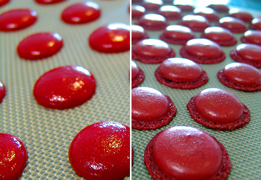 """Am Samstag hat Jürgen Macarons gebacken. Ich hab so was noch nie zuvor gemacht, aber Jürgen ist für solche """"Futzelarbeiten"""" immer zu haben. Die Macarons waren als Dekoration für sein kulinarisches """"Kunstwerk"""" gedacht."""